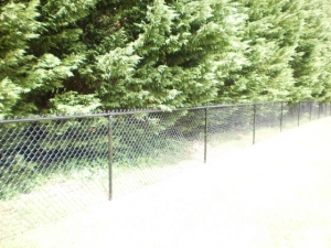 Top-Rated Aluminum Fences in Oakwood GA - The Fence Store - 2014-05-12_15