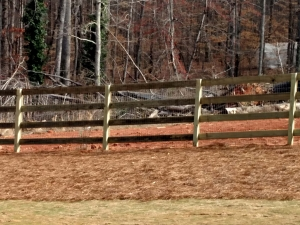 Professional Fence Materials in Bethlehem GA - The Fence Store - 4_Board_ranch_with_Welded_Wire-min
