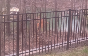 image-metal-fences-gallery-5.png